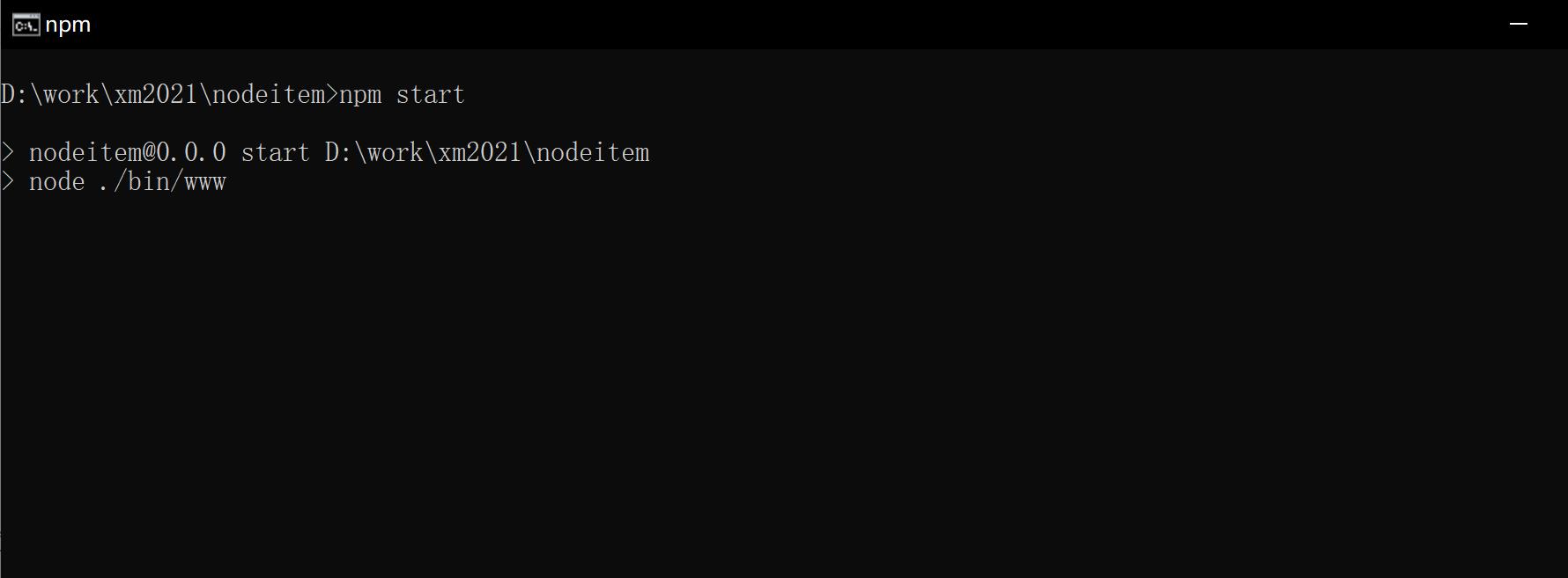创建一个nodejs项目